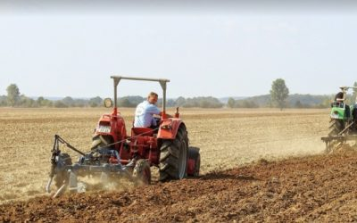 How Does Ploughing Release Carbon? – Causes and Potential Solutions