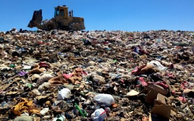 What happens to food waste in landfills? The full environmental impact